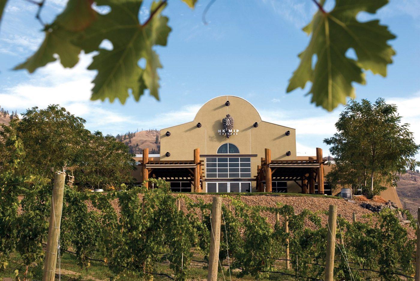 Okanagan Wine Tours