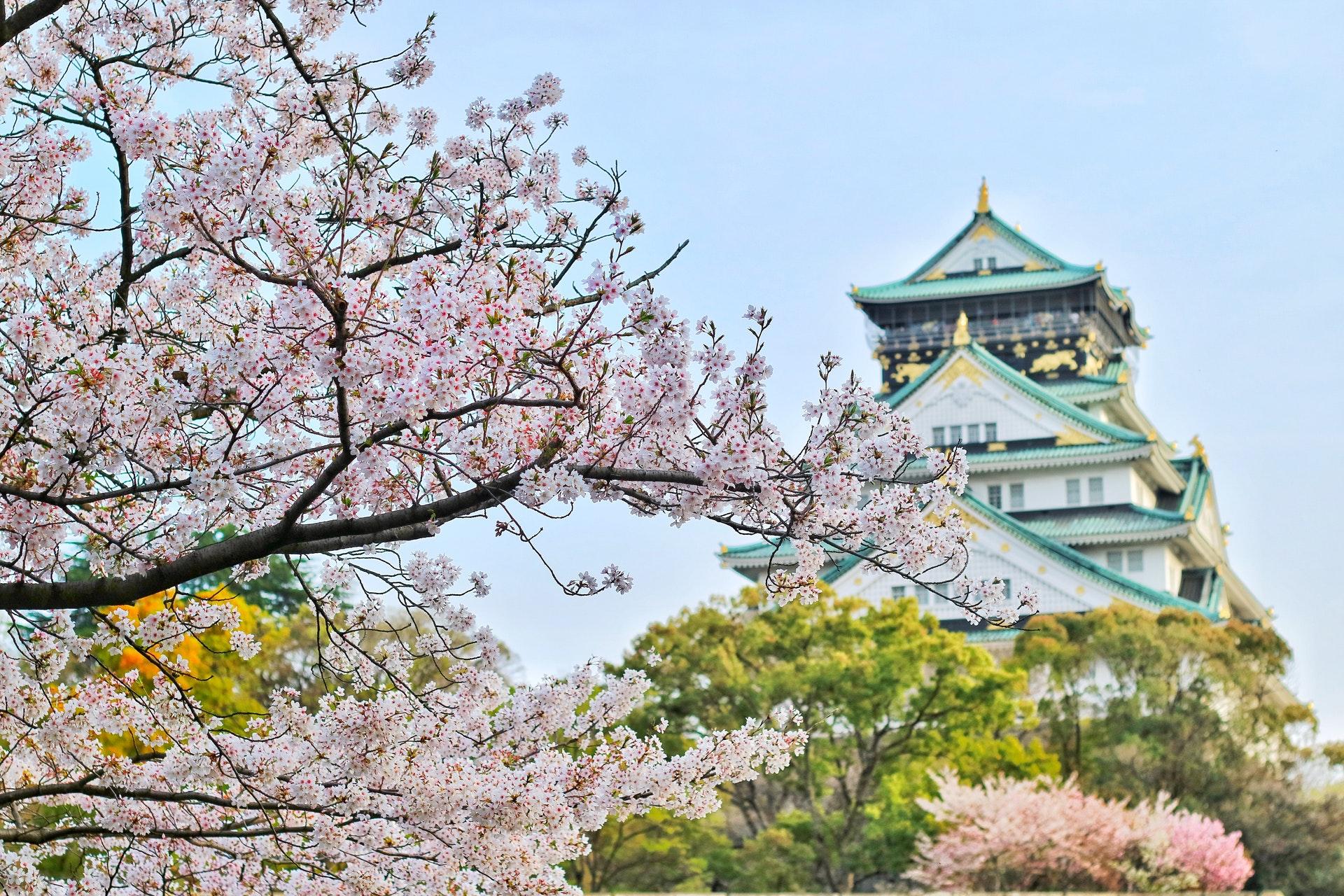 Remarkable Japan