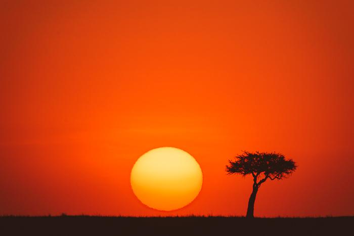 2. MARA, MASAI, KENYA